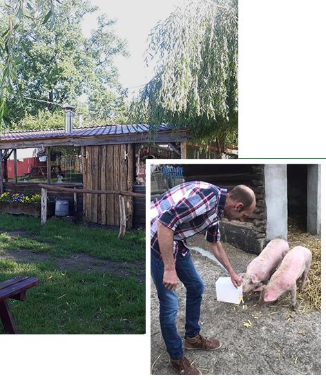 Het Karrewiel - Kinderboerderij
